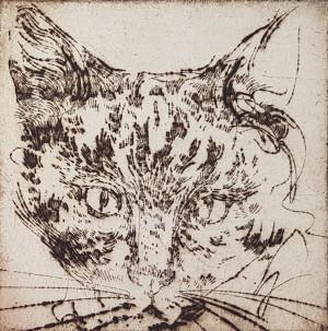Katinai 1
