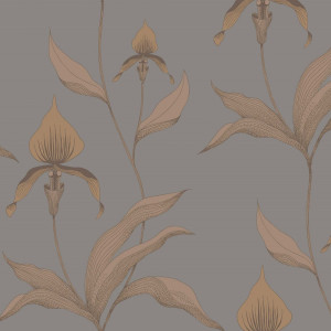 Tapetai 95/10056 Contemporary Restyled, Cole&Son