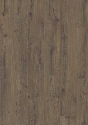 Ąžuolas klasikinis rudas, IM1849