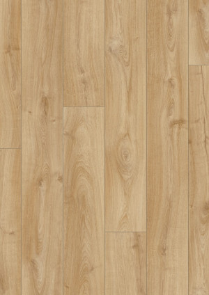 Laminuotos grindys Pergo, Classic gelsvas ąžuolas, L0323-03359_2
