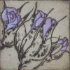 Gėlės 4
