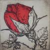 Gėlės 9