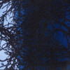 Kilimas Vallila Kelohonka blueberry 50x80 cm