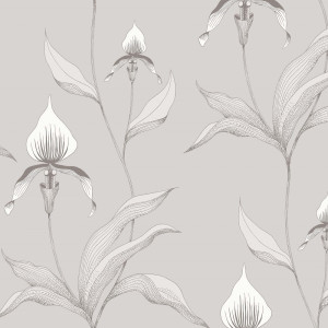 Tapetai 95/10055 Contemporary Restyled, Cole&Son