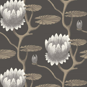 Tapetai 95/4026 Contemporary Restyled, Cole&Son