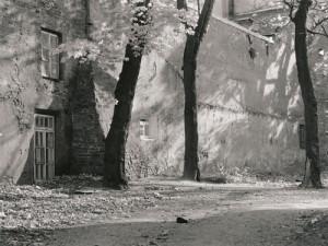 Arūnas Baltėnas / Vilnius. Bazilijonų kiemo siena / 1992 / Autorinis sidabro bromido atspaudas / 22 x 29