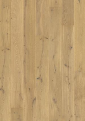 Parketlentės Quick Step, Šiltas natūralus ąžuolas baltas ypač matinis, PAL5237S