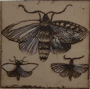 Vabzdžiai 2