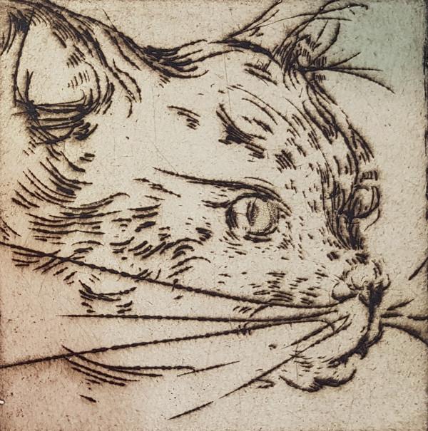 Katinai 3