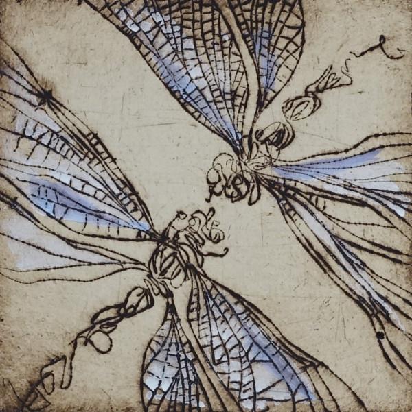 Vabzdžiai 5
