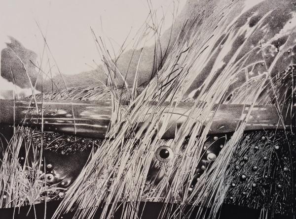 """Birutė Stančikaitė / """"Žvilgsnis"""" / 2003 / litografija / 47,5x61,5 (Paveikslai, fotografija"""