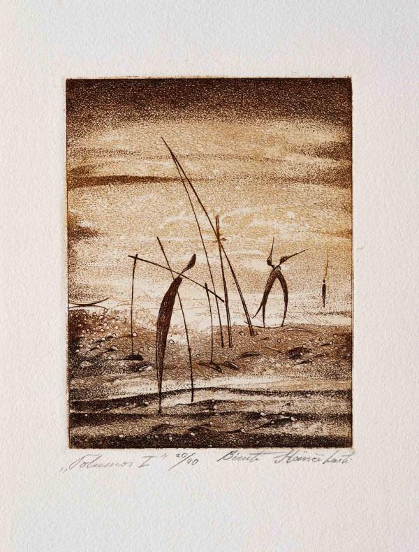 """Birutė Stančikaitė / """"Tolumos"""" / 2003 / litografija / 47,5x61,5"""