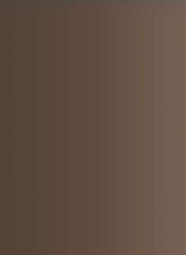 F6 - bronzinė