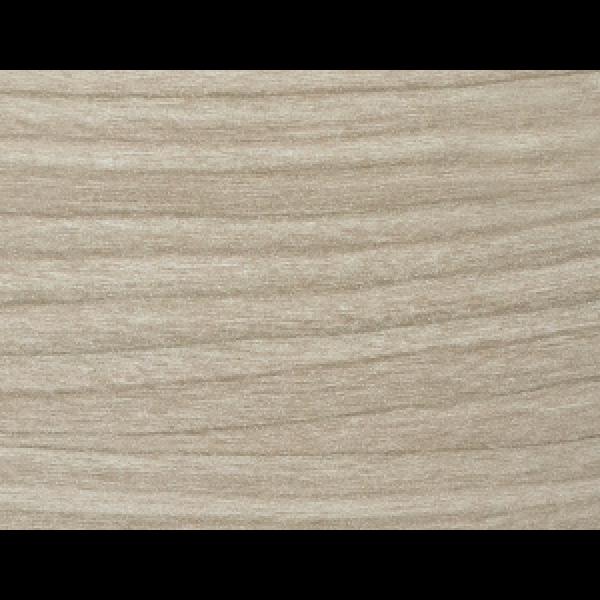 P050261 pilkai smėlinis ąžuolas